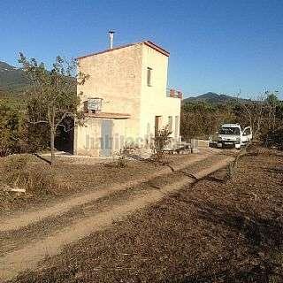 Finca r�stica en Borges del Camp (Les). Finca 4 hectareas casa y dos pozos Carrer vilaplana,s/n