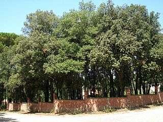 Terreno residencial en Mai� de Montcal. Parcela esquinera frente al bosque. Urbanizaci�n mol� d�en lloren�.